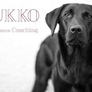 Dukko Performance Coaching